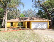 40118 Palm Street, Lady Lake image