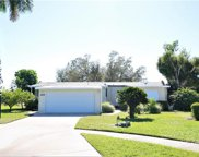 209 Belle Isle Ct, Naples image