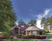 1095 Yellow Jasmine Drive, Longs image