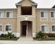 9516 Amberdale Court Unit 201, Riverview image