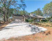 17274 Raintree Road, Lutz image