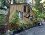 229 Madrona Rd, Boulder Creek image
