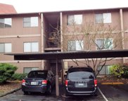 17430 Ambaum Blvd S Unit 33, Burien image