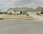 134 Waterford Cove Dr, Calera image