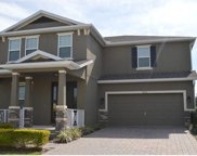 14536 Spotted Sandpiper Boulevard, Winter Garden image