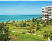 4151 N Gulf Shore Blvd Unit 1003, Naples image