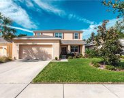 11403 Coventry Grove Circle, Lithia image