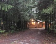1321 King Valley Dr, Maple Falls image