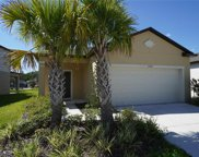 17509 Butterfly Pea Court, Clermont image