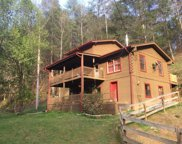 1425 Old Hag Hollow Way, Sevierville image