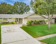 1534 Cottonwood Terrace, Dunedin image