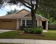 6208 Crickethollow Drive, Riverview image