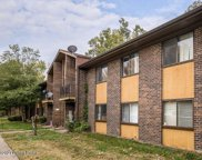 7074 Wildwood Cir Unit 166, Louisville image