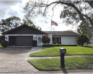 2949 Macalpin Drive N, Palm Harbor image