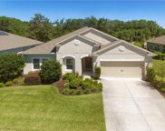 5255 Pine Lily Circle, Winter Park image