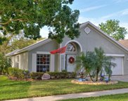 1800 Needham Road, Apopka image