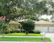 1711 Country Trails Drive, Safety Harbor image