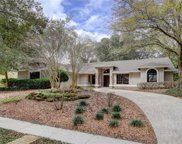 11404 Gibralter Place, Temple Terrace image