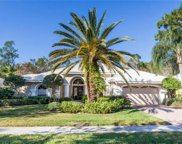 6737 Mill Run Cir, Naples image