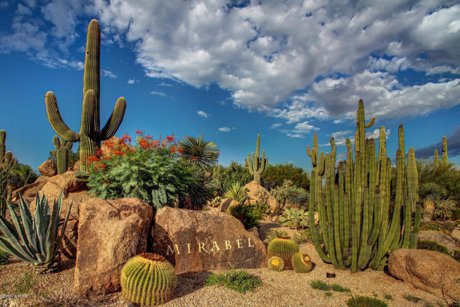 Enjoy Luxury Arizona Living in Mirabel Real Estate