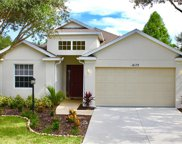 14179 Cattle Egret Place, Bradenton image