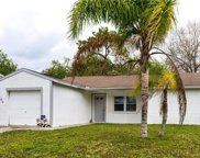 5603 Carrollwood Meadows Drive, Tampa image