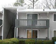 104 Woodland Village Unit 104, Homewood image