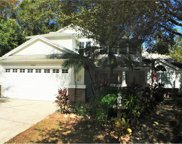 7343 Song Bird Drive, New Port Richey image