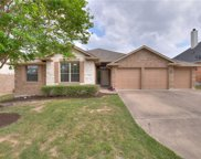 5205 Texas Bluebell Drive, Spicewood image