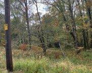 Maplewood Garden  Road, Monticello image