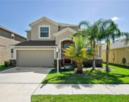 11520 Peru Springs Place, Riverview image