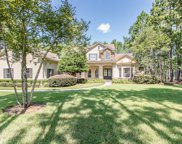 119 GREENBRIAR ESTATES DR, St Johns image