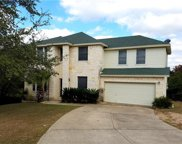 22406 Briarview Dr, Spicewood image