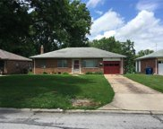 7405 Cheshire, St Louis image