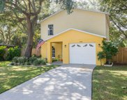 4436 W Pintor Place, Tampa image