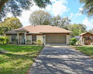 2632 Waterview Drive, Eustis image