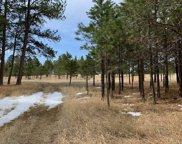 TBD Last Stand Road, Custer image