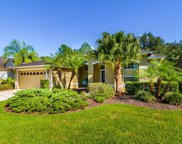 10146 Whisper Pointe Drive, Tampa image