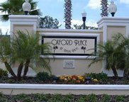 5125 Palm Springs Boulevard Unit 11206, Tampa image