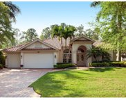 9848 Rocky Bank Dr, Naples image