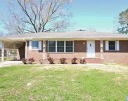 423 3rd Ave, Pell City image
