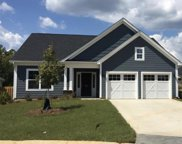 828 Summer Sands Court, Chapin image