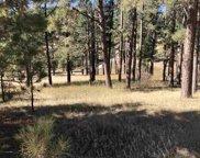 Tract Wild Iris Carroll Creek Road, Custer image