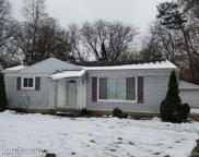20329 PURLINGBROOK, Livonia image