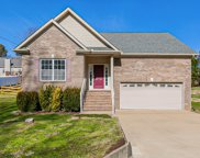 222 Shady Dr, Columbia image