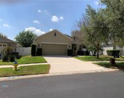 11153 Goldenrod Fern Drive, Riverview image