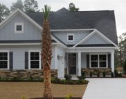 1803 Wood Stork Dr., Conway image