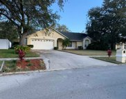 1748 Queen Palm Drive, Apopka image
