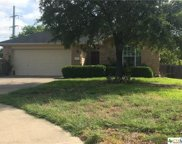 212 Crossing Trl, Round Rock image