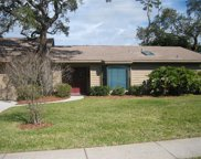 863 Pinewood Terrace W, Palm Harbor image